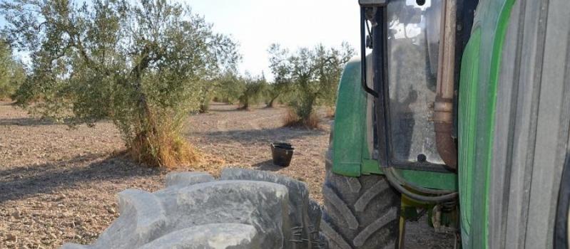 Esta semana habrá ITVs agrícolas en Marchena, El Saucejo, Marismilla, Salteras, Las Cabezas de San Juan…
