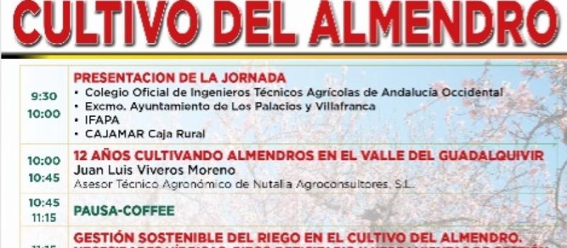 COITAND celebra el próximo martes, 19 de noviembre, la Jornada