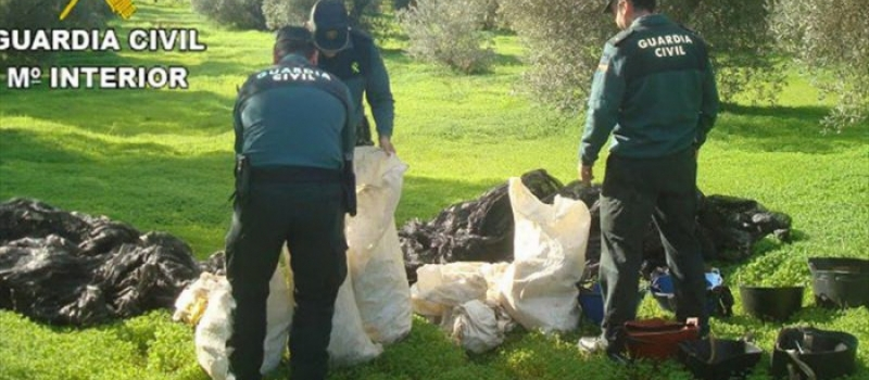 Recomendaciones de ASAJA-Sevilla para intentar prevenir robos en tu explotación agrícola o ganadera