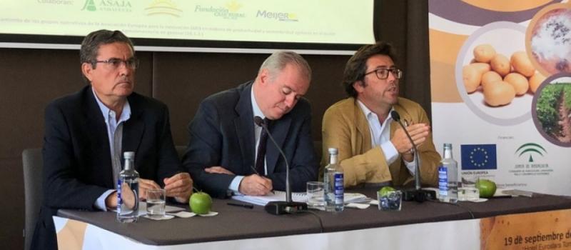 ASAJA-Sevilla muestra los resultados del Grupo operativo en el cultivo de la patata a más de…