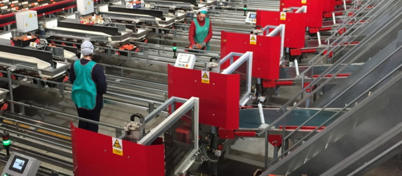 El importe unitario provisional de la ayuda asociada al tomate para industria es de 185,94 euros…