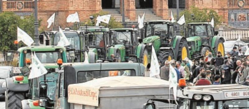 Cuenta atrás para evitar la fuga de 100 millones al año del campo andaluz