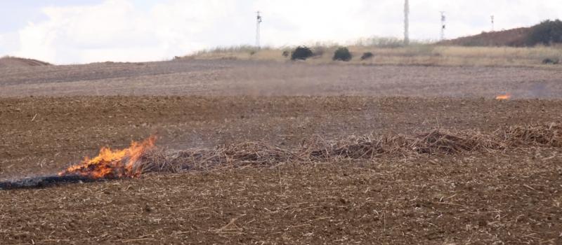 Labores de volteo y quema de rastrojos y restos de cosecha: ¿Qué exige la normativa en…