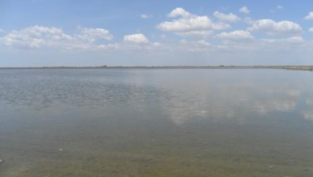 La escasa dotación de agua retrasa las siembras del arroz y puede reducir la superficie del…