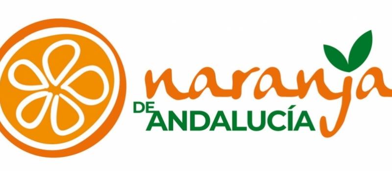 La Junta pone en marcha una campaña para difundir la excelencia de la 'Naranja de Andalucía'…
