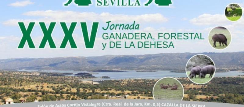 La XXXV Jornada ganadera, forestal y de la dehesa de ASAJA-Sevilla se celebrará el próximo 17…