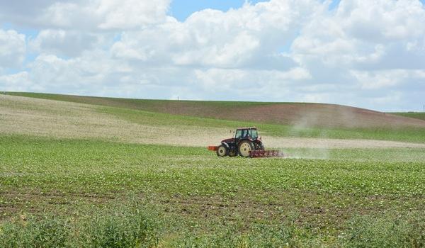 El FEGA ha establecido el coeficiente definitivo del greening para la campaña 2020