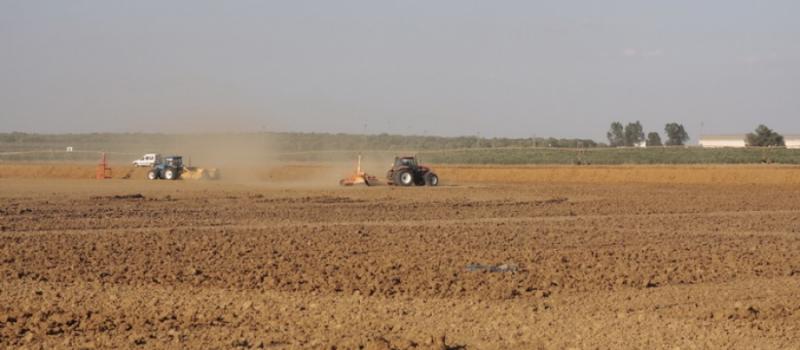 Recomendaciones para preparar el terreno antes de la siembra de cereales de invierno