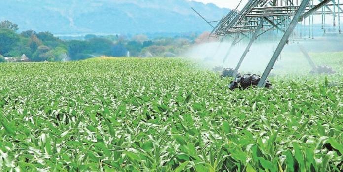 Cómo gestionar los costes de las fincas agrícolas tras la imparable subida de la luz