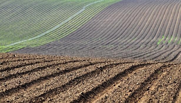 España podría perder más de 4.700 millones de euros de fondos agrícolas