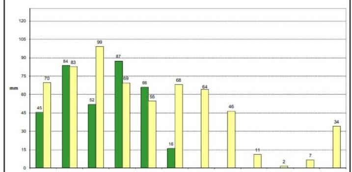 Las precipitaciones acumuladas a lo largo del año hidrológico son un 21% inferior a la media…