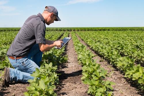 ASAJA convoca los premios nacionales Joven Agricultor 2020